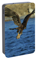 Portable Battery Charger featuring the photograph Young Bald Eagle With Fish by Coby Cooper