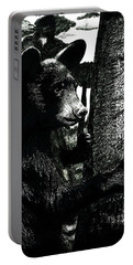 Young Black Bear In Tree  Portable Battery Charger