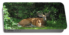 Young Buck Resting In The Shade Portable Battery Charger by Betty Pieper