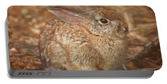 Young Cottontail In The Morning Portable Battery Charger