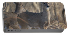 Young Deer In A Pack Portable Battery Charger