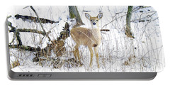 Young Doe And Spring Snow Portable Battery Charger