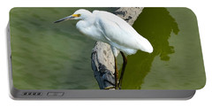 Young Egret Resting Portable Battery Charger