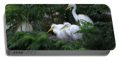 Young Egrets Fledgling And Waiting For Food-digitart Portable Battery Charger