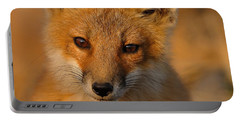 Young Fox Portable Battery Charger
