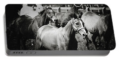 Young Horses On The Pasture Portable Battery Charger