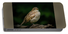Young House Sparrow Portable Battery Charger