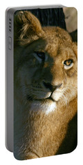 Portable Battery Charger featuring the photograph Young Lion by Karen Zuk Rosenblatt