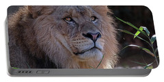 Young Lion King Portable Battery Charger