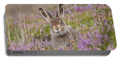 Young Mountain Hare In Purple Heather Portable Battery Charger