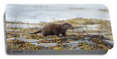 Young Otter Portable Battery Charger