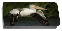 Young Pelican 2016-1 Portable Battery Charger