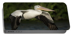 Young Pelican 2016-1 Portable Battery Charger by Thomas Young
