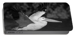 Young Pelican 2016-3 Portable Battery Charger