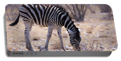 Portable Battery Charger featuring the digital art Young Plains Zebra by Ernie Echols