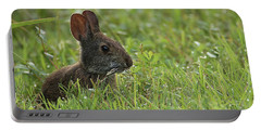 Young Rabbit Dining Portable Battery Charger