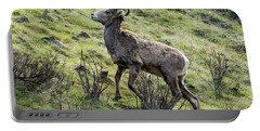 Portable Battery Charger featuring the photograph Young Ram Climbing by Mike Dawson