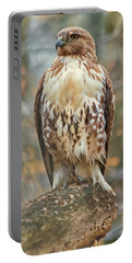 Young Red Tailed Hawk  Portable Battery Charger