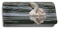 Young Reflection  Portable Battery Charger