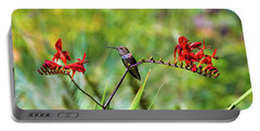 Young Rufous Hummingbird Perched On Flower Portable Battery Charger