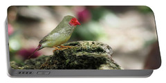 Young Star Finch Portable Battery Charger