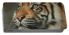 Young Sumatran Tiger Portrait Portable Battery Charger