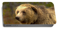 Young Yellowstone Grizzly Portable Battery Charger