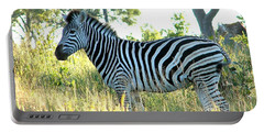 Young Zebra Portable Battery Charger by Bruce W Krucke
