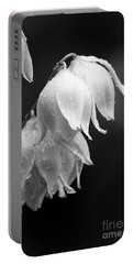 Yucca After The Rain Portable Battery Charger
