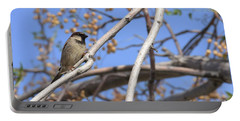 Yucca Valley House Sparrow  Portable Battery Charger