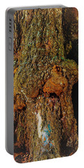 Z Z In A Tree Portable Battery Charger