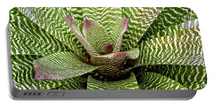 Zebra Bromeliad Portable Battery Charger by Venetia Featherstone-Witty