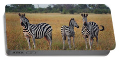 Zebra Family Portable Battery Charger by Bruce W Krucke