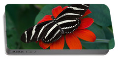 Zebra Longwing Butterfly Portable Battery Charger by Kenneth Albin