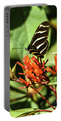Zebra Longwing No.2 Portable Battery Charger