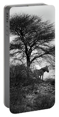 Portable Battery Charger featuring the photograph Zebra On A Hill  by Ernie Echols