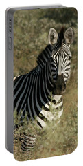 Portable Battery Charger featuring the photograph Zebra Portrait by Karen Zuk Rosenblatt