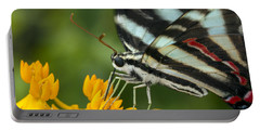 Zebra Swallowtail Drinking On The Fly Portable Battery Charger