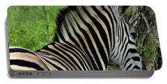 Zebra Walks Portable Battery Charger