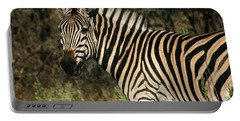Zebra Watching Portable Battery Charger