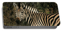 Portable Battery Charger featuring the painting Zebra Watching by Karen Zuk Rosenblatt