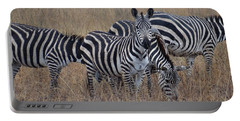 Zebras Walking In The Grass 2 Portable Battery Charger by Exploramum Exploramum