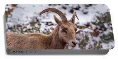 Zion Bighorn Sheep Close-up Portable Battery Charger