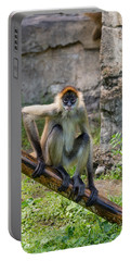 Zoo Monkey Portable Battery Charger