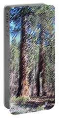010219 Red Woods California Portable Battery Charger