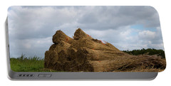 Portable Battery Charger featuring the photograph Bound Reeds  by Anjo Ten Kate