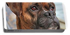 Boxer Portable Battery Charger