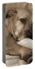 Boxer Varon Portrait 2 Portable Battery Charger