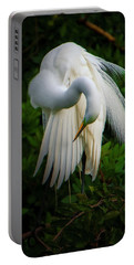 Breeding Plumage And Color Portable Battery Charger