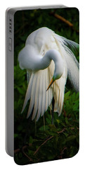 Portable Battery Charger featuring the photograph Breeding Plumage And Color by Donald Brown